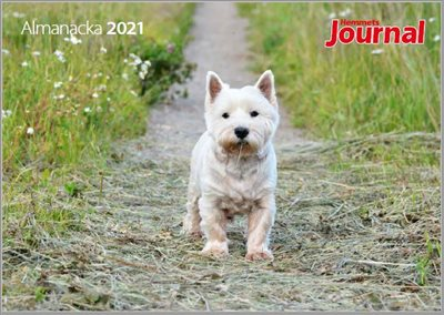 HJ almanacka 2021