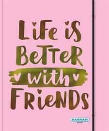 Mina Vänner