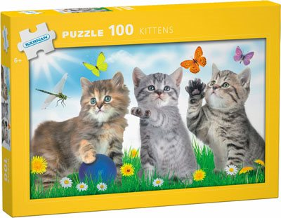 Kittens: 100 bitar pussel